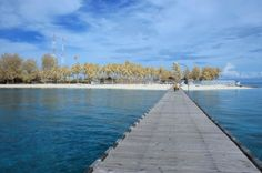 Blue Sea of Derawan Island