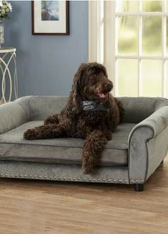 Give your dog a luxurious and comfortable place to rest without sacrificing your homes' style with the Outlaw Bed, complete with a durable wood frame and memory foam for long-lasting comfort.