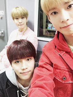 NCT (音楽グループ)の画像 p1_6