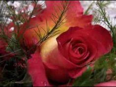 Love Is All - Yanni