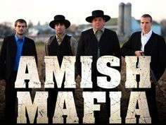 Amish Mafia....not sure if it's truly real but entertaining for sure.