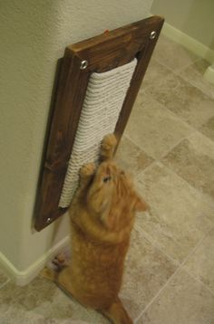 Wall Mount Scratching Post for Cats
