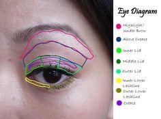 eye makeup, eye shadow, birthdays, eye diagram, beauti, appli eyeshadow, eyeshadows, cards, where to apply eyeshadow