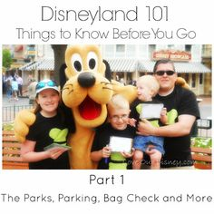 Love Our Disney: Disneyland 101 - Things To Know Before You Go {Part 1}...has size of cooler needed and other goodies!