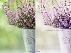 Photoshop kind of makes me mad :100 Free Photoshop Actions (And How to Make Your Own)