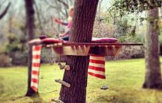 Build a simple tree house.
