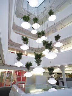 lights, credit suiss, hanging plants, offices, office buildings, green life, switzerland, light installation, design