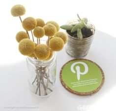 We love our pins, but we want them to be green! #clickclean  Take action now and ask Pinterest to go green! https://secure3.convio.net/gpeace/site/Advocacy?cmd=display&page=UserAction&id=1608