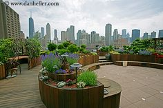 Chicago rooftop