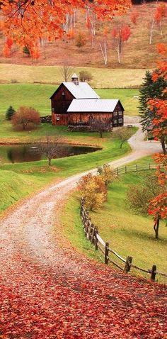 Enjoy the autumn colors along a rustic road.