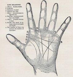 MAVERICK DIVA: Luna Tucumana reading charts, buddhism, magic, vintage, hands, hand prints, psychic, palms, palm read