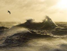 The formidable Drake Passage - Justin Hofman