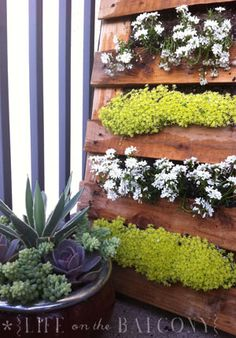 Vertical pallet garden for small spaces.