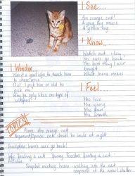 Writers' Notebooks - Modelling