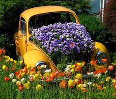 garden planters, vw beetles, yard, vw bugs, gardens, flower power, flower beds, old cars, flowers garden