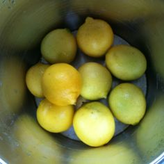 Lemons from Gingham Cottage