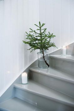 Christmas tree cuttings decorating the stairs. So simple and elegant - and we have the trees. I'll replace the candles with a simple decoration.