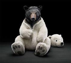 Bear in a teddy bear suit.....too cute !!