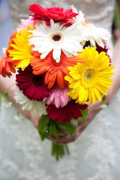daisy bridal bouquets   Gerber Daisy Wedding Flowers « You And Me World