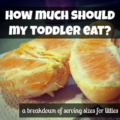 How Much Should A Toddler Eat? a breakdown of serving sizes for little ones.