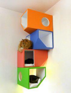 cats, cat furniture, house design, cat towers, contemporary houses, cat houses, cat trees, modern interiors, design studios