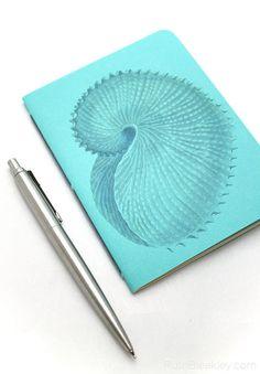 little handmade notebook with a nautilus shell #bookbinding