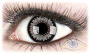 Venus Gray Contact Lenses