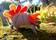 Snail And Tortoise Sweaters Really Do Exist, And They're Surprisingly Adorable (PHOTOS)