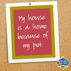 My house is a home because of my pet. #pet #love #quote #dog #cat