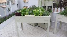 herb vegetables garden kitchen garden veget garden garden planter