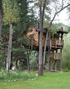 treehouse / The Green Life <3 cabin, house design, dream, tree houses, treehous, trees, green life, crystal, mountain homes