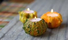 Gourd Candles autumn, simple centerpieces, candle holders, fabul fall, white pumpkins, gourd candl, fall crafts decorations, tea lights, diy centerpieces