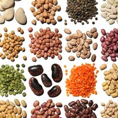 Legumes...alfalfa, clover, peas, beans, lentils, lupins, mesquite, carob, soy, and peanuts.