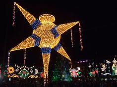 Zócalo de la Ciudad de México. Navidad 2012