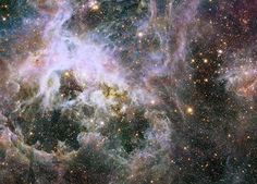 Unraveling the Web of the Tarantula Nebula - SpaceRef