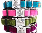 Metal Engraved Buckle Dog Collar Personalized by shopmimigreen