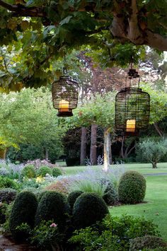 Love the birdcage lights!