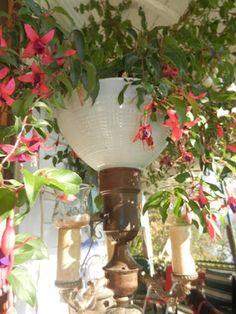 flowers in a vintage lamp #vintage #flowers
