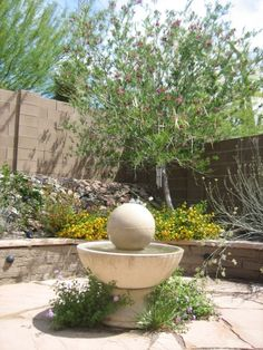 Small Xeriscape Garden in the Southwest