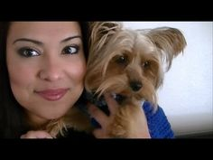 Crochet a sweater for your dog. - Great step by step video tutorial. Easy to follow. I had to learn to crochet sweaters for my little dog because dog sweaters at the pet store are outrageously expensive.