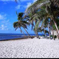 key west 150x150 Key West Beach 500 × 375 - 183KBmbiru.com