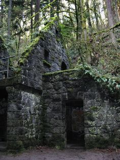 The Witch's Castle. Mossy ruins located in Forest Park, Portland, Oregon.