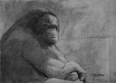 (SOLD) #41 Orangutan