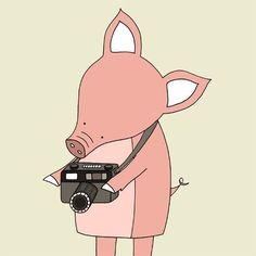 and this little piggy had a camera...:)........artist?
