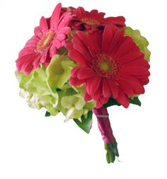 Bridesmaids bouquet by Just Roses Plus. Green hydrangea, red gerbera daisies.