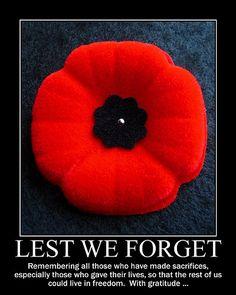 memorial day poppy pin