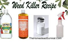 Weed Killer Recipe from Your Kitchen