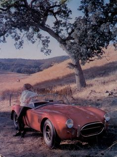 Shelby Cobra 427 factory postcard from 1965.