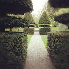 Topiary yew hedges #topiary at farmleigh house dublin www.farmleigh.ie