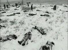 Battle (massacre) of wounded knee